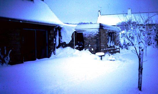 Winter Snow, 1991