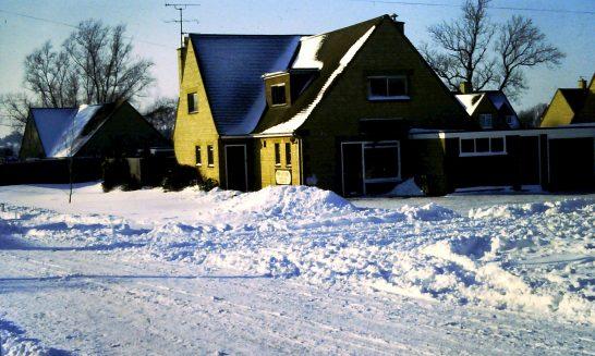 Winter, 1982