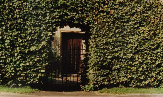 Tudor House Gate