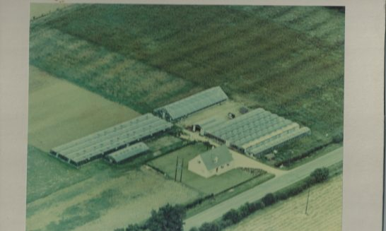 Arbour House Aerial View