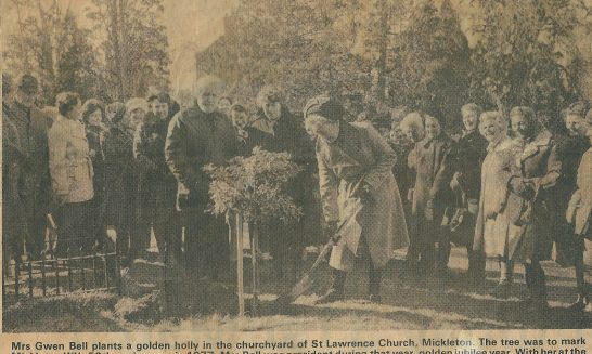 Churchyard:  planting the golden holly tree