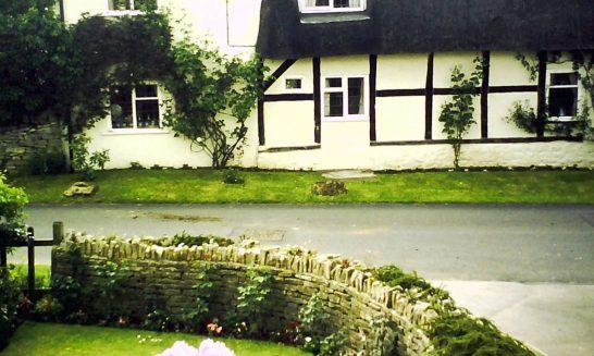 Back Lane: The Cottage & Rhodedendron Bush in Inverlea garden