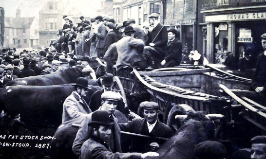 Mickleton Men at the Christmas Fat Stock Show at Shipston on Stour, c.1895.