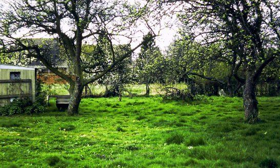 Alveston House: back garden in1987