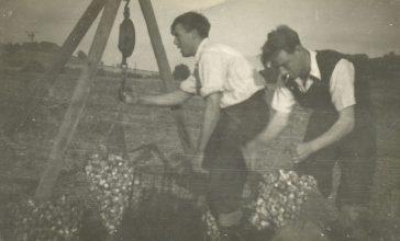 Market Gardening in Mickleton