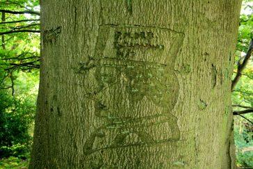 The carving   Maureen Shears